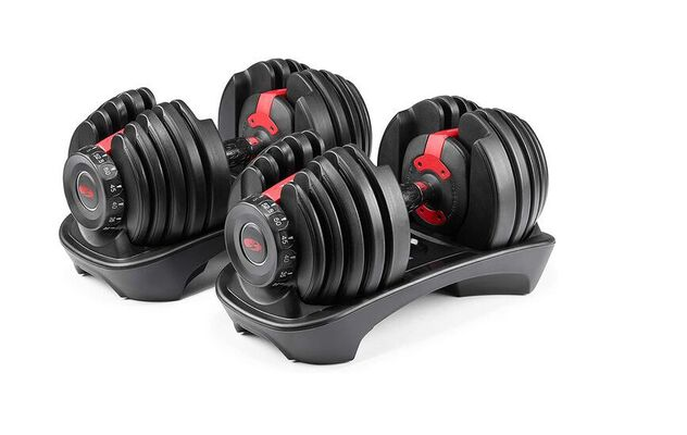 1. Bowflex Compact Adjustable Dumbbell for Lateral Raise, Scott Curl, and Reverse Crunch