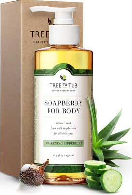 #5. Tree to Tub Clarifying Peppermint Wild Soapberries Body Wash