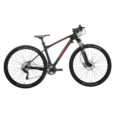 10. Steppenwolf Tundra Carbon MTB, Made in Germany