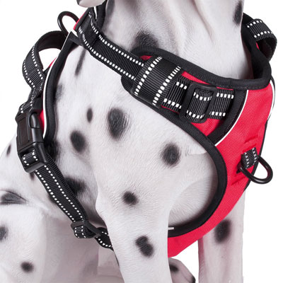 #8. PoyPet Dog Harness