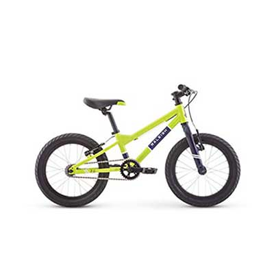 2. RALEIGH Bikes Kids' Bike for Boys between 3 and 6 Years of Age, Green