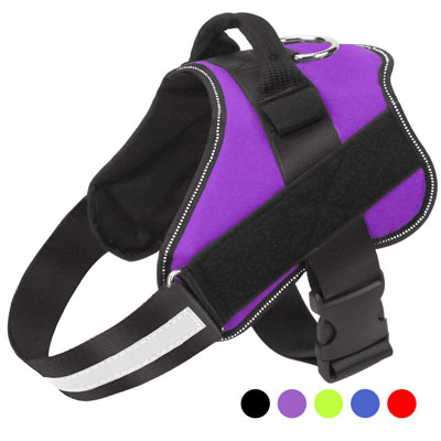 #6. Bolux Dog Harness