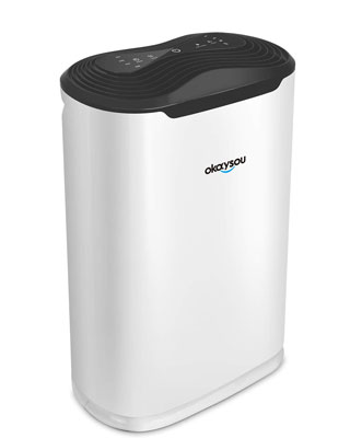 #6. Okaysou AirMax8L 5-in-1 Duo Filtration Quiet Air Cleaner