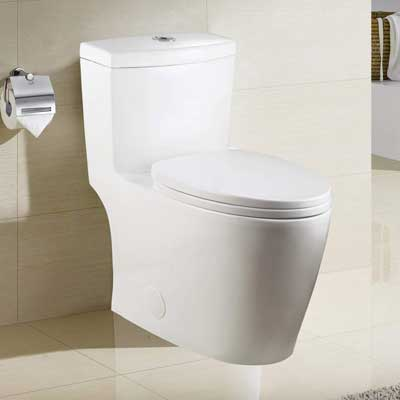 #6. Winzo WZ25028 Dual-Flush 0.8/ 1.6 GPF 17'' High-Efficiency One-Piece Toilet (Seat White)