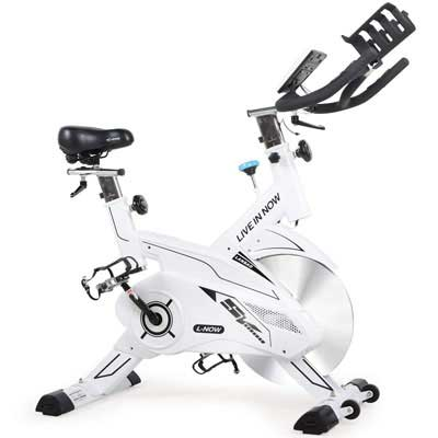 1. L NOW Recumbent Exercise Bike - Smooth and Quiet