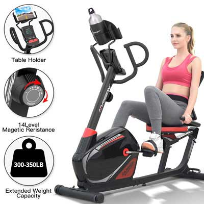 2. HARISON Recumbent Bike Stationary - 14 Levels of Resistance