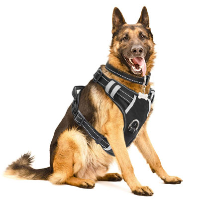 #9. WINSEE Dog Harness